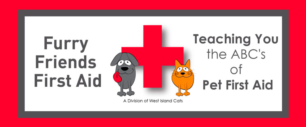 Furry Friends First Aid
