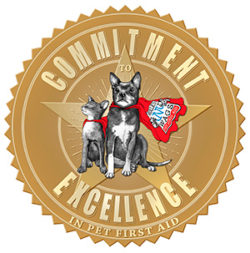 Walks 'N' Wags Commitment to Excellence - West Island Cats