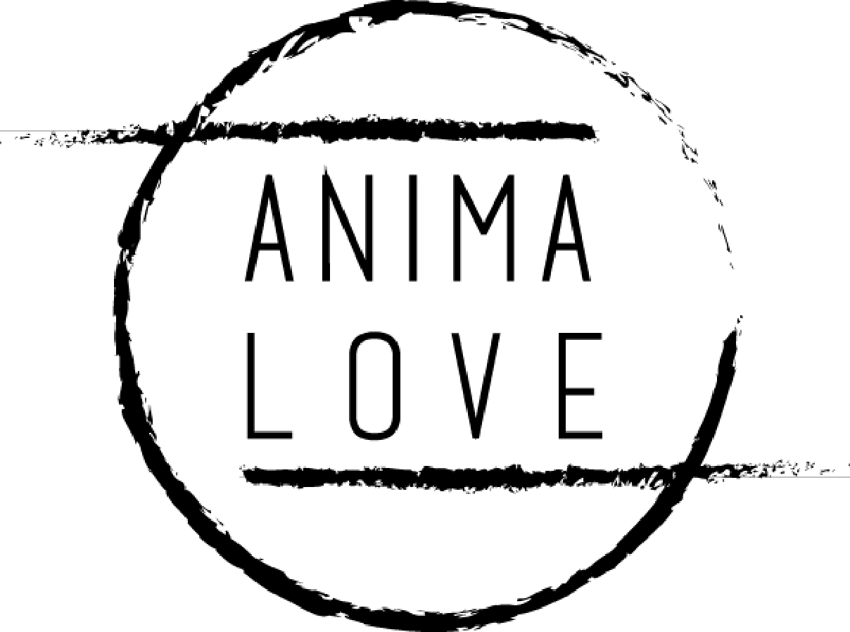 logo_Animalove